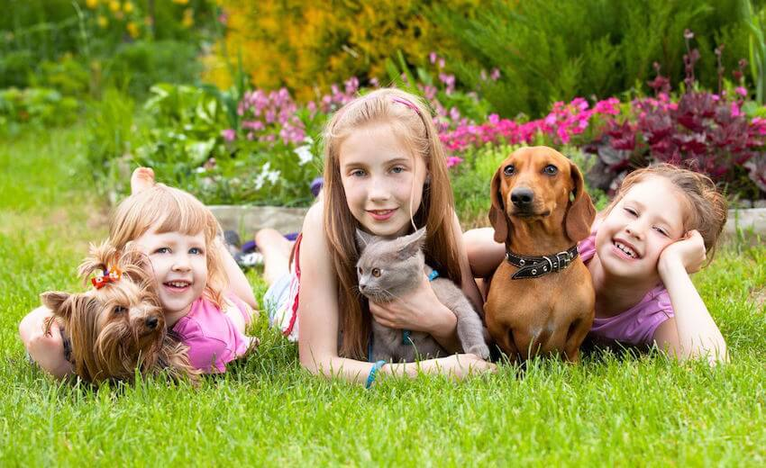 Image Showing Three Smiling Kids Lying on the lawn with their pets